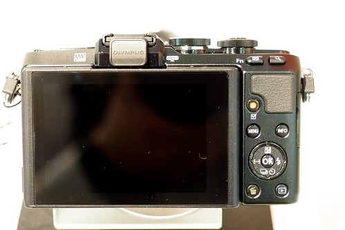 P8290341 - Version 2