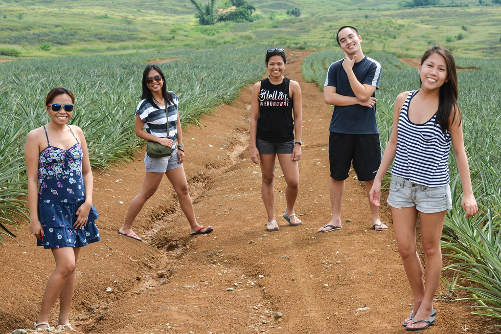 Ormoc, Leyte, Pineapple, Plantation