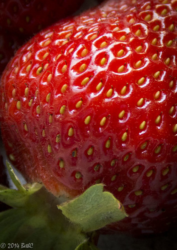 Fun with Strawberry Seeds