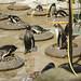 The Penguin Chronicles 7