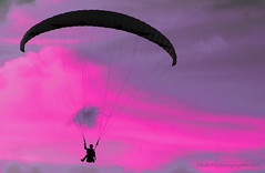 paraglider              IMG_2124bs