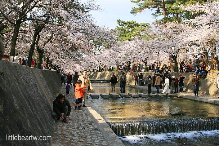 夙川公園-24