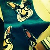 My new socks #disguise #groucho #bunnies