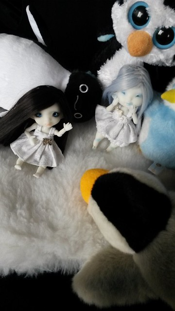 Mouic <3 {Dust of Dolls Blue Këte} [New p.8] - Page 4 15082503410_a9a9f44914_z