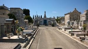 Noicattaro. Il cimitero comunale intero