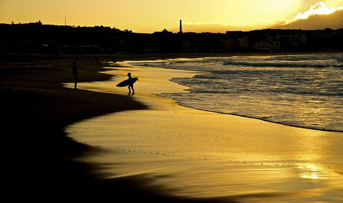 bondi silhouette sunrise australia
