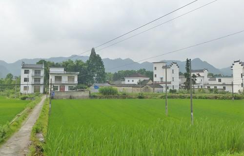 Jiangxi-Tunxi-Wuyuan-bus (5)