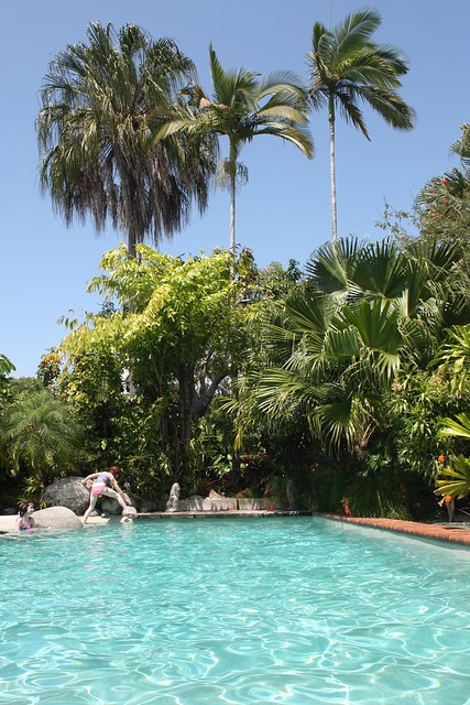 The Pool - AirBnB in Port Douglas