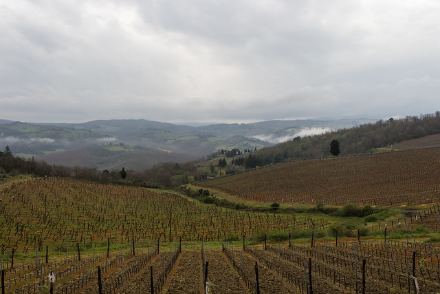 Fields of Chianti - Tavarnelle