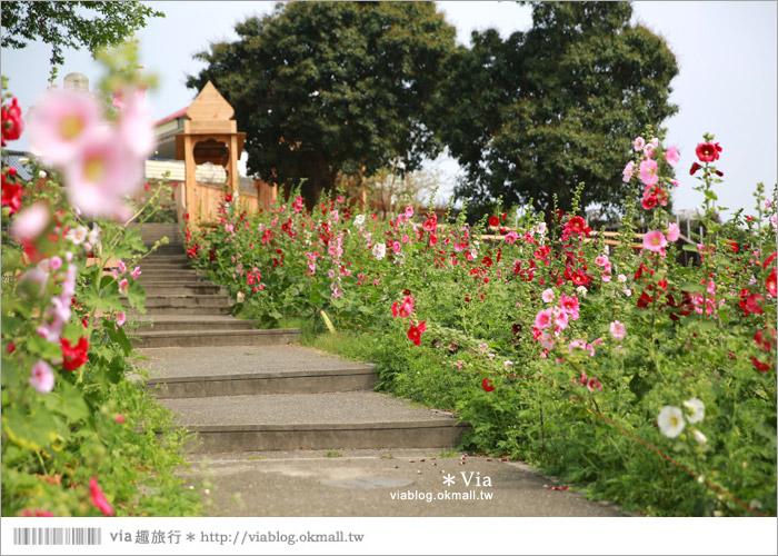【彰化景點】克林姆莊園Cream Manor~小型動物園!戶外親子同遊好去處6