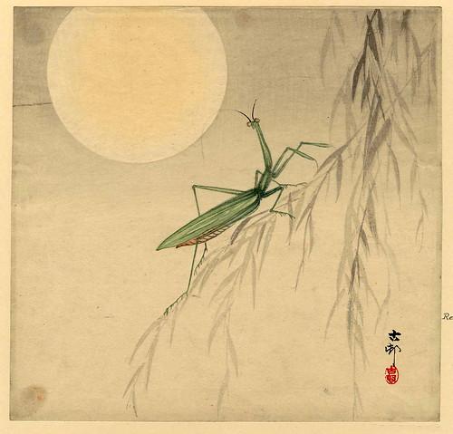 020-Mantis religiosa y la luna-1912-Ohara Koson -via-Ukiyu-e-org