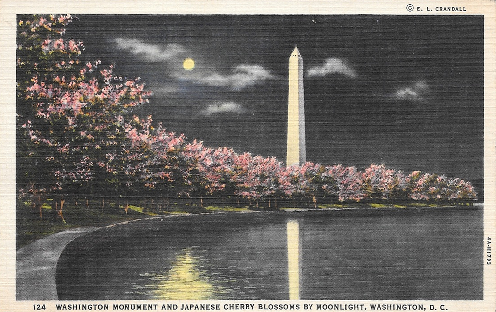 WashingtonDCPostcard