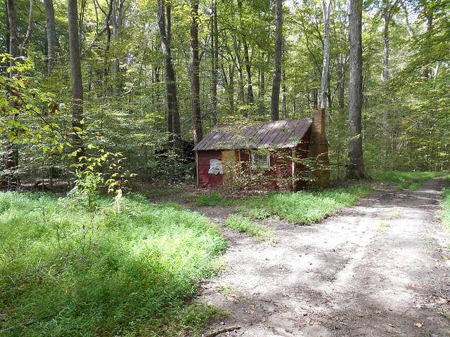 An abandon cabin
