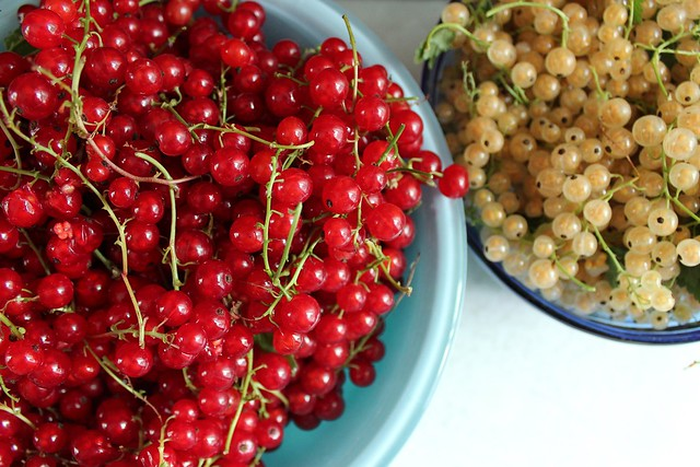 red & whitecurrants
