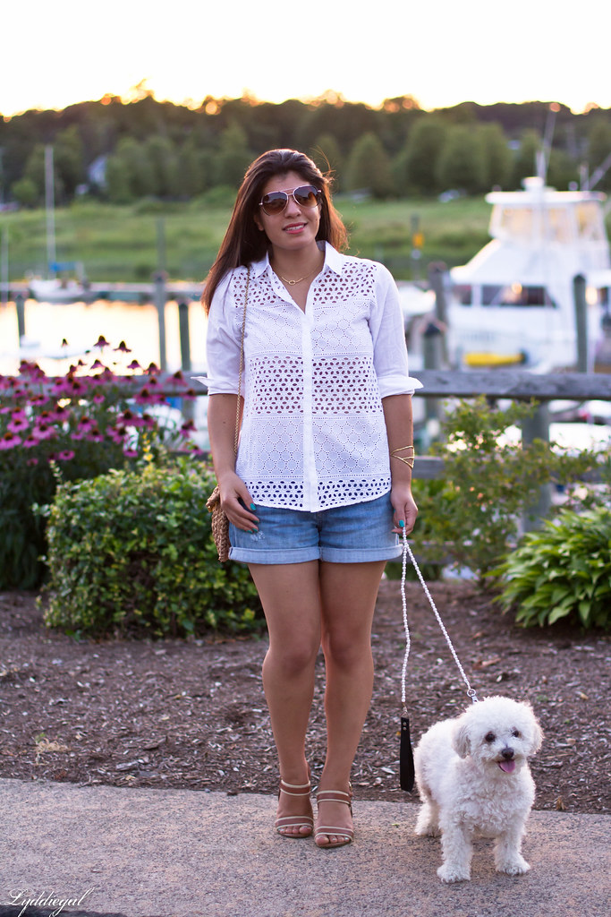 white eyelet buttondown, denim shorts 7