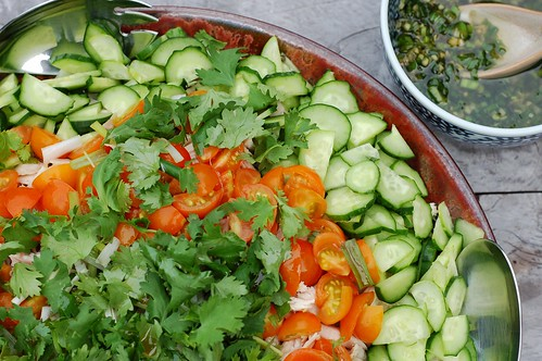 Hainanese chicken with rice by Eve Fox, the Garden of Eating, copyright 2014