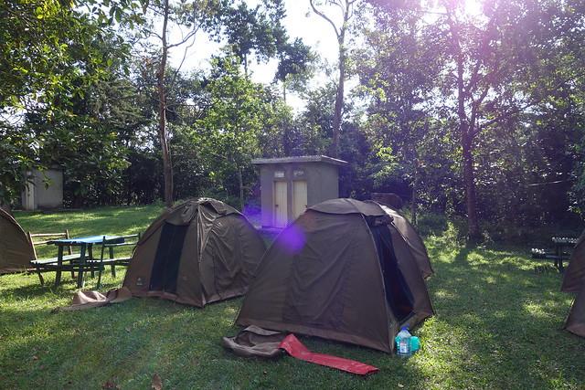140623 Campsite (2)