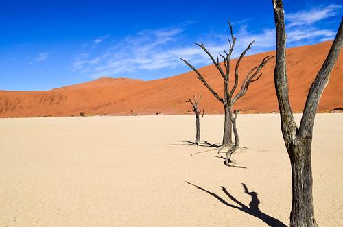 Dead trees of Dead Vlei, Namib desert, Namibia