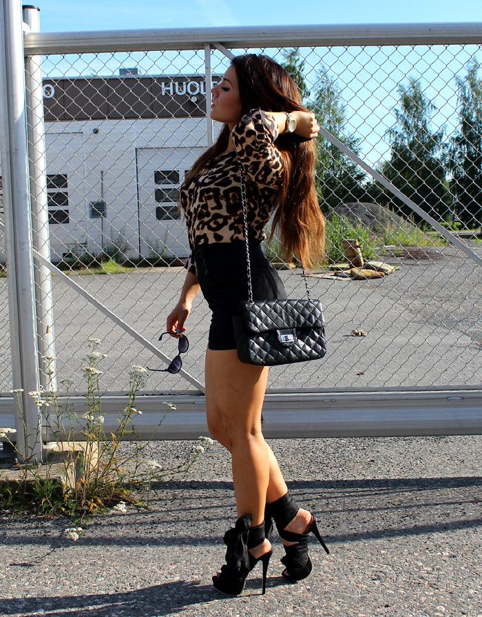 leopard 055
