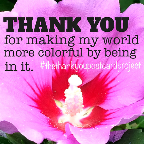 The Thank You Postcard Project - #theyhankyoupostcardproje ct