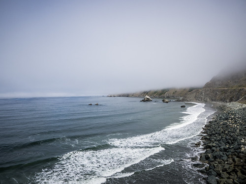 Coastal Redwoods and Fog-024