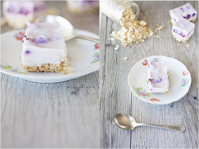 Blueberry Frozen Yogurt Granola Bars
