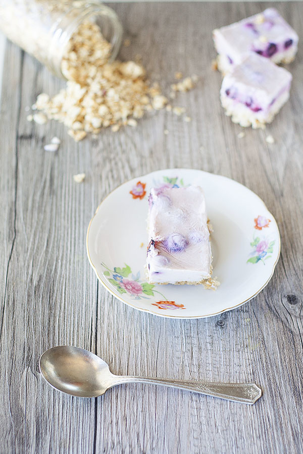frozen yogurt granola bars