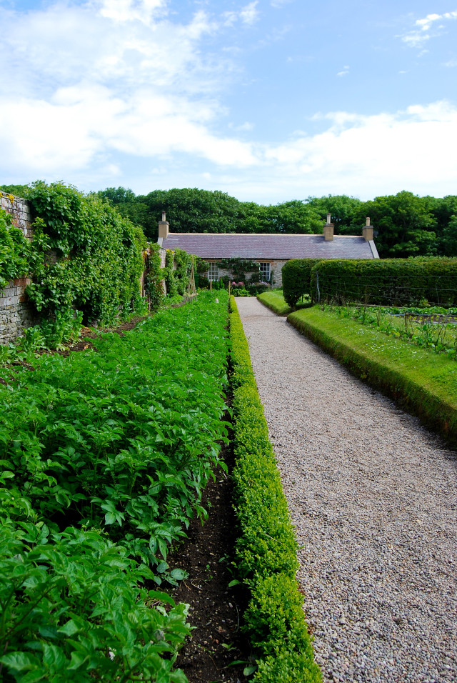 Garden Path at Balfour Castle