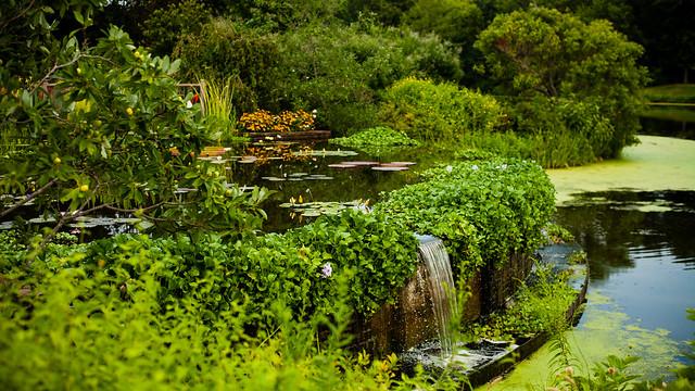Powell Gardens, Kansas City