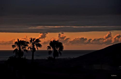 backlight sunrise alba amanecer ghostbuster gigi49
