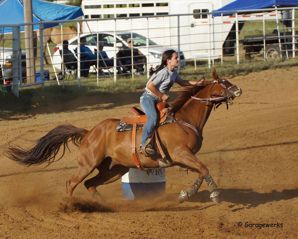 Welch Jr Rodeo, August 2014