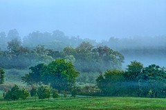Misty landscape in the morning