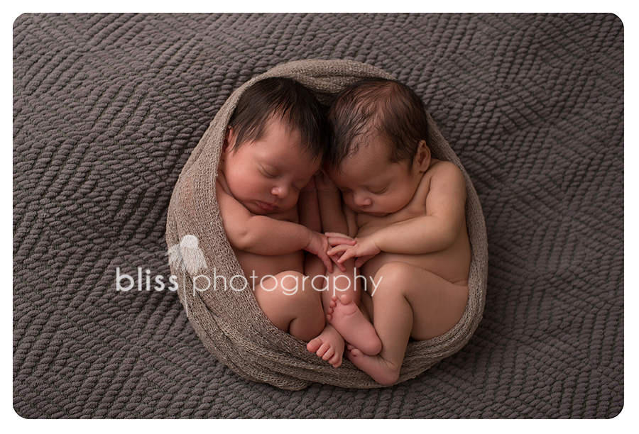 newborn twin bliss photography-4206