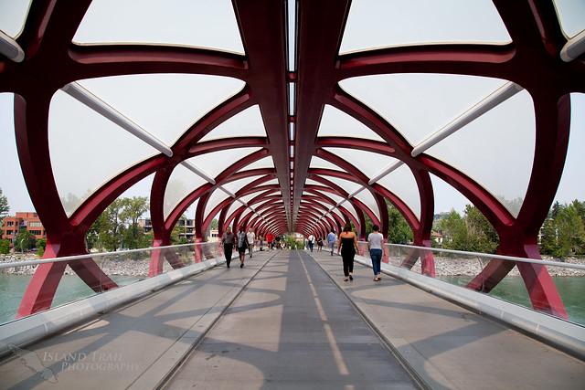 Calgary - 2014-07-17-6505