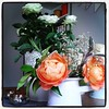 Every time I visit mum there is a new flower arrangement. These orange roses are from her garden.