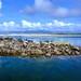 Albufera en Islas Cíes
