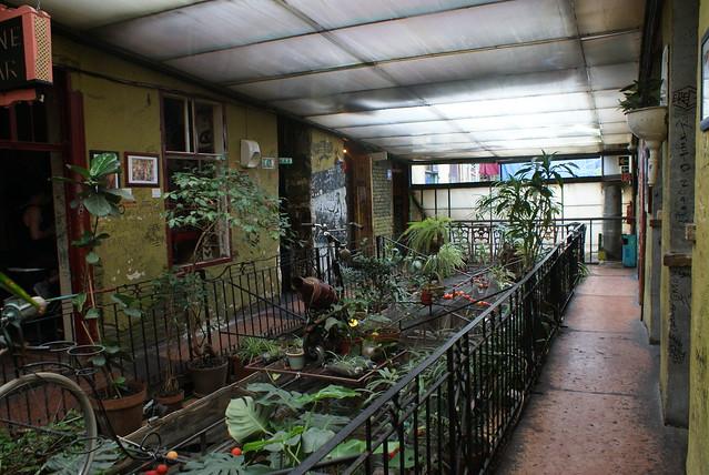 Rue végétale à l'étage du Szimpla : Coloré, vivant, original et agréable.
