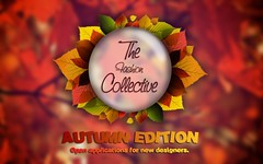 """""""The Fashion Collective""""  Open application for new designers!"""