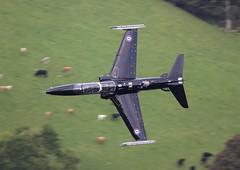 ZK028 \'S\' Hawk T2 RAF 4(R) Sq