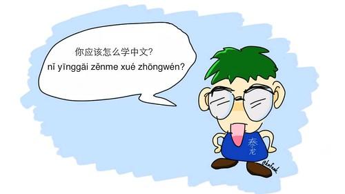 你应该怎么学中文