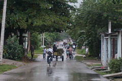 Camajuani 2014