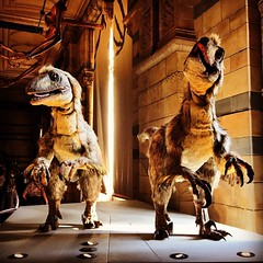 Dinosaurs #nhm #naturalhistorymuseum #london #366photos
