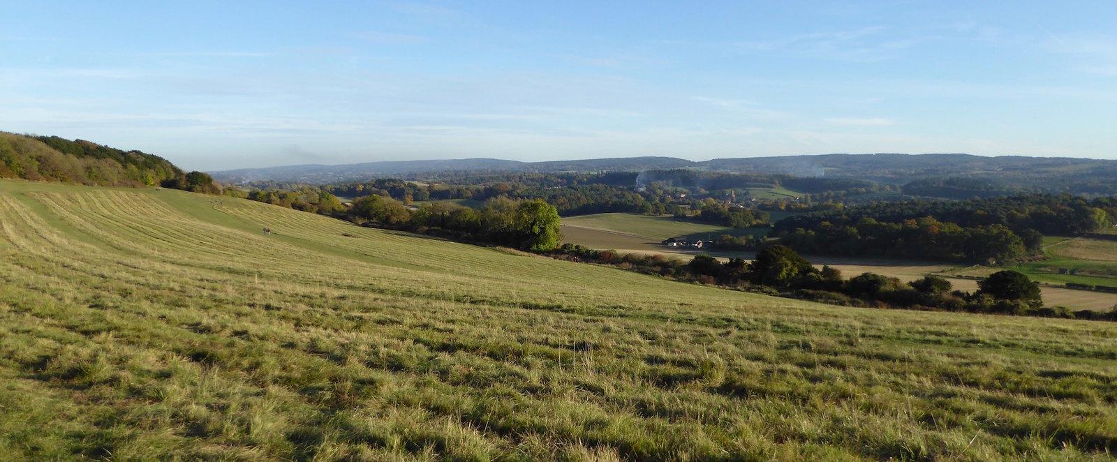 The escarpment near Newlands Corner Guildford to Horsley walk