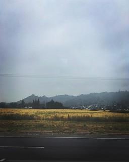 Está nublado el camino