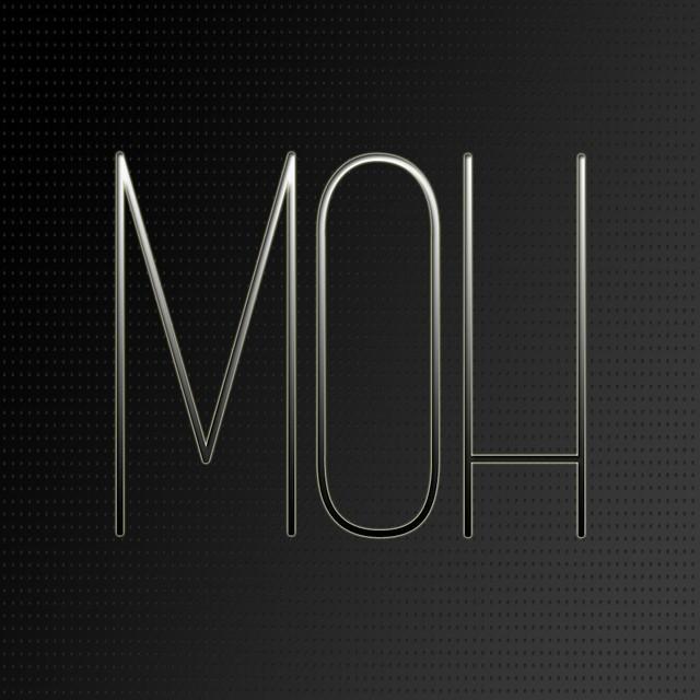 FFE - MOH logo