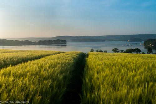 bretagne brittany d200 finistére france french littoral mer nikon port sea seaside barley orge europe campagne borddemer seascape