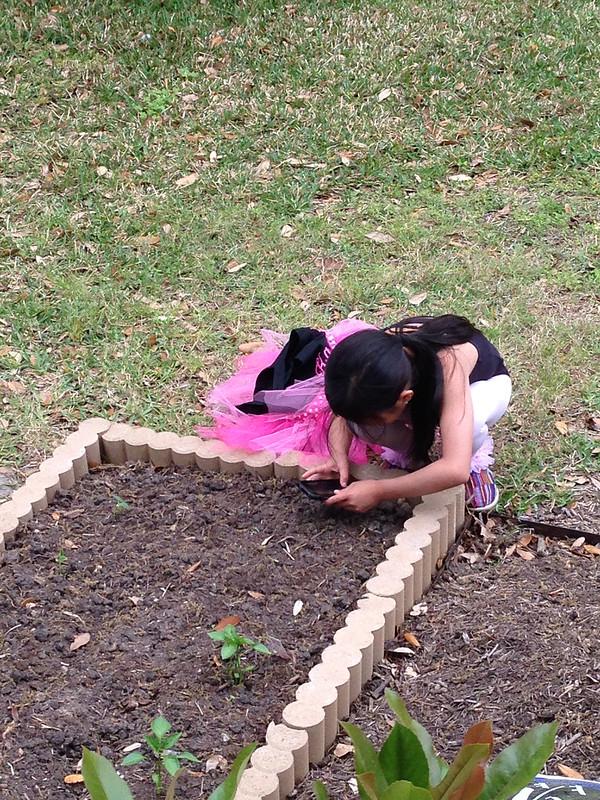 garden_4332
