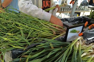 Ferry Plaza Farmers Market -Green Garlic