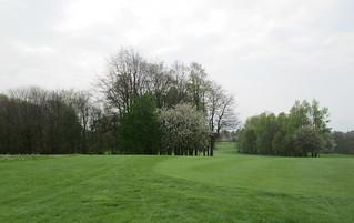 trees near Balbirnie