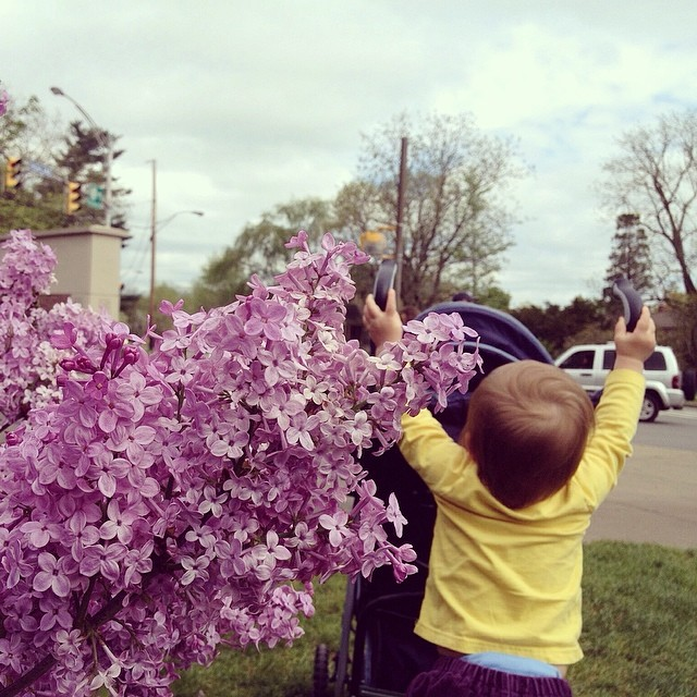 tbt: lilacs and M's back (this time last year!)